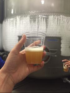 houston flying saucer sierra nevada beer camp hopricot beer
